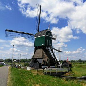 Amsterdam - Hank